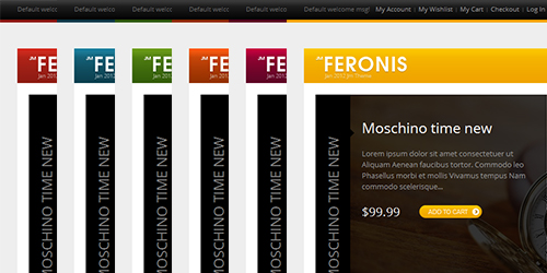 Responsive Magento theme Feronis feature