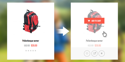 Magento extension QuickView in Responsive Magento theme TravelGear