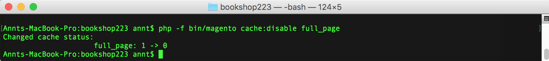 Disable Magento 2 cache