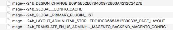 Magento 2 cache records