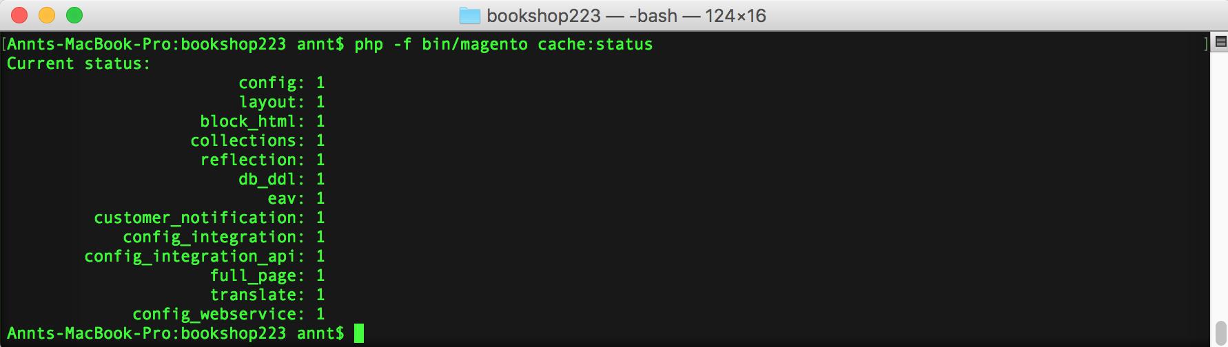 Magento 2 cache status