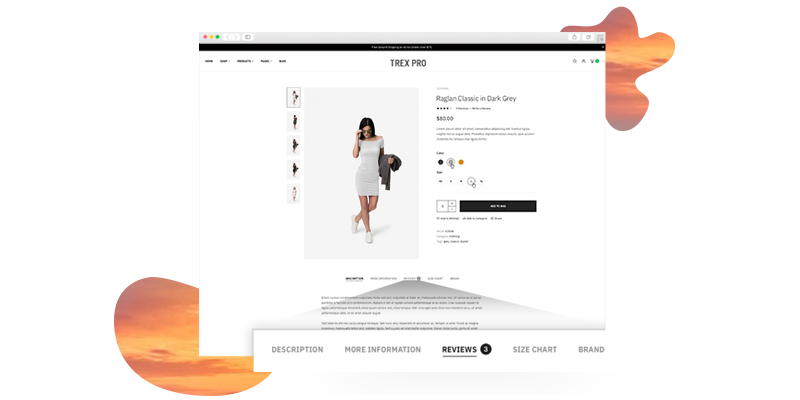 Rapid Magento 2 Site Development Bundle - Advanced custom product tabs